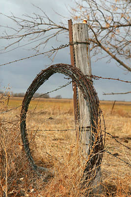 Photograph - Fencing With My Dad by Shirley Heier