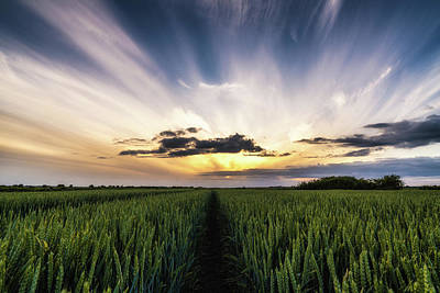 Photograph - Fenland Sky by James Billings