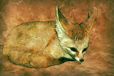 Nocturnal Animals Painting - Fennec Fox by Jack Zulli