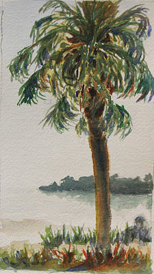Painting - Fennimore Palm by Libby  Cagle