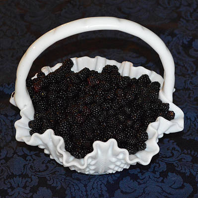 Photograph - Fenton Blackberry Basket by rd Erickson