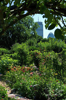 Photograph - Fenway Victory Gardens In Boston Massachusetts  -30951-30952 by John Bald