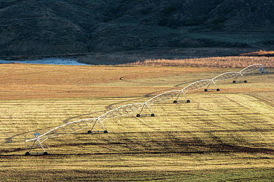 Photograph - Fergus County Irrigation by Todd Klassy