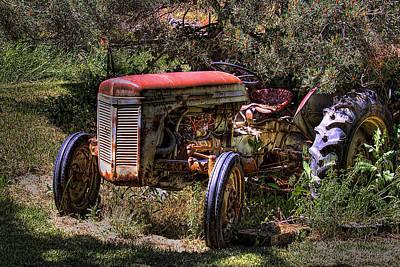 Ferguson Photograph - Ferguson Tractor by David Patterson