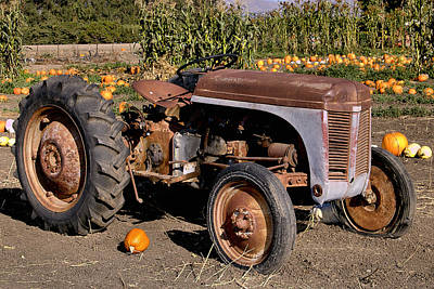 Photograph - Ferguson Tractor by Michael Gordon
