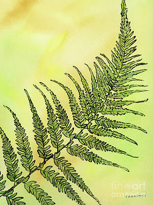 Painting - Fern 1 by Diane Thornton