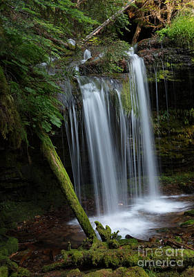 Photograph - Fern Falls Side View by Idaho Scenic Images Linda Lantzy