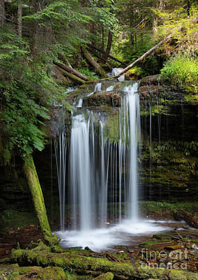 Photograph - Fern Falls Summer by Idaho Scenic Images Linda Lantzy