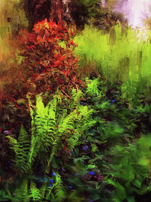 Photograph - Fern Forest Encounter by Connie Handscomb