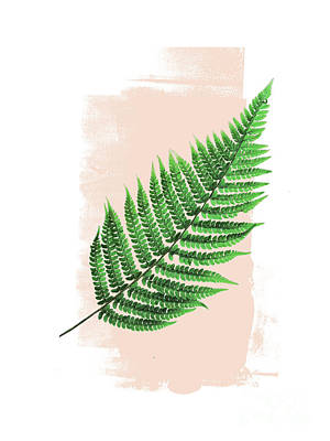 Mixed Media - Fern Leaf On Pink by Emanuela Carratoni