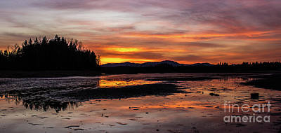 Photograph - Fern Ridge Sunset 1 by Michael Cross