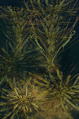 Mixed Media - Fern Series Inky Aether by Kristin Doner