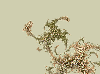 Digital Art - Fern by Susan Maxwell Schmidt