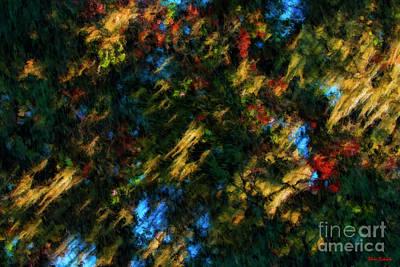 Photograph -  Fern To Art  by Blake Richards