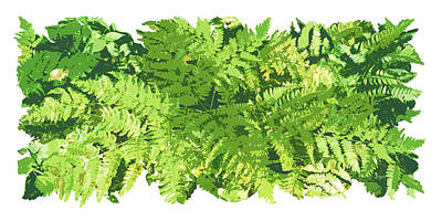 Fern Painting - Fern Vignette by JQ Licensing