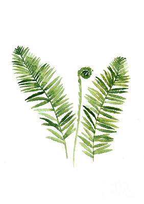 Giclee Mixed Media - Fern Watercolor Painting by Joanna Szmerdt
