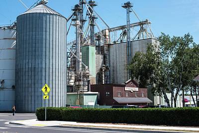 Photograph - Ferndale Grain by Tom Cochran
