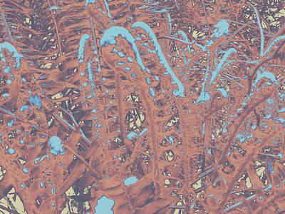 Photograph - Ferns #2 by Anne Westlund