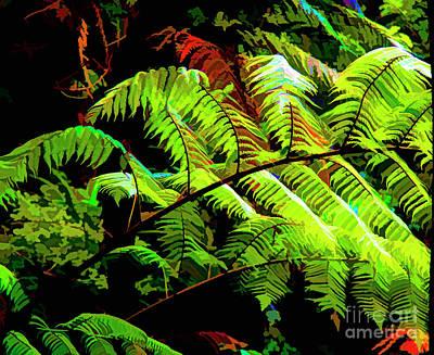 Photograph - Ferns Of Love by Rick Bragan
