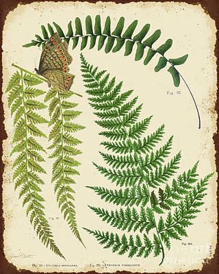 Ferns On Tin-a-jp2005 Original by Jean Plout