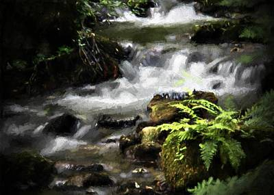 Digital Art - Ferny Stream by Charmaine Zoe