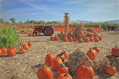 Photograph - Ferrari Pumpkin Patch by Donna Kennedy