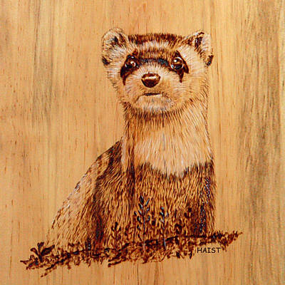 Pyrography - Ferret Pillow/bag by Ron Haist