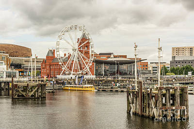 Photograph - Ferris Wheel At The Bay by Steve Purnell