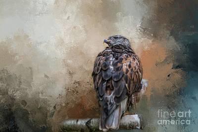 Photograph - Ferruginous Hawk by Eva Lechner