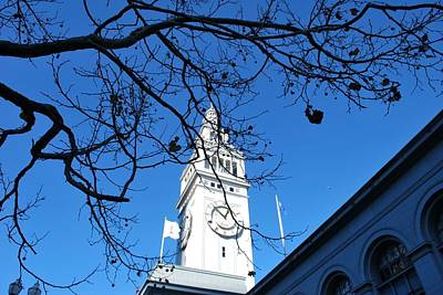 Photograph - Ferry Building - San Francisco Embarcadero - Tree View by Matt Harang
