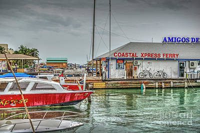 Photograph - Ferry Dock Boats Moored by David Zanzinger