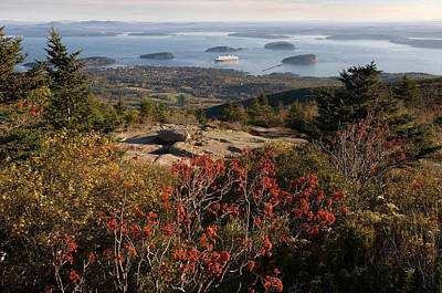 Porcupine Photograph - Ferry In The Sea, Bar Harbor, Porcupine by Panoramic Images