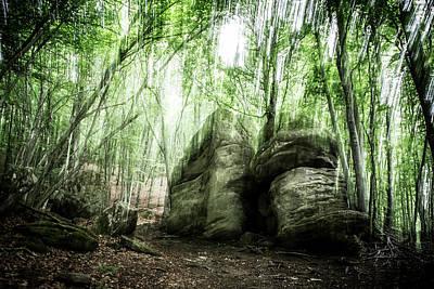 Landscape Photograph - Fertile Soil by Marc Garrido