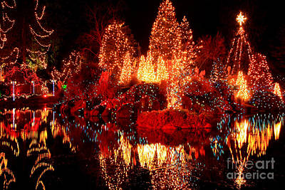 Photograph - Festival Of Lights by Frank Townsley