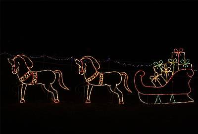 Photograph - Festival Of Lights Prancing Ponies by Kathryn Meyer