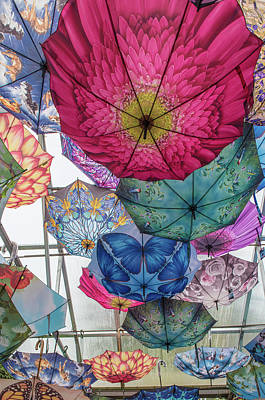Photograph - Festival Of Umbrellas by Patricia Dennis
