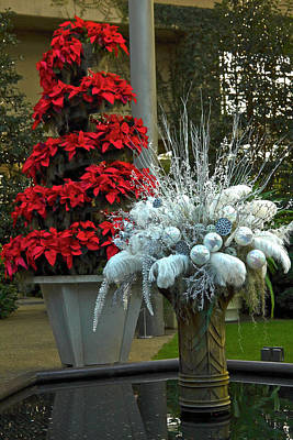 Photograph - Festive Christmas by Sally Weigand