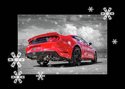 Photograph - Festive Roush Warrior Mustang by Gill Billington