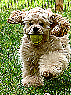 Fetch Art Print by Laura Brightwood