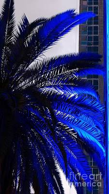 Blue Palms In Miami Art Print by Carlos Amaro