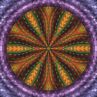 Digital Art - Fiber Optimism by Becky Titus