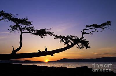 Overhang Photograph - Fidalgo Island Sunset by Greg Vaughn - Printscapes