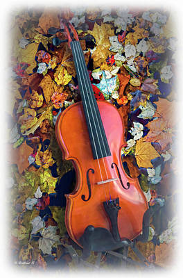 Mixed Media - Fiddle Faddle  by Brian Wallace