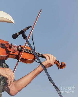 Photograph - Fiddler On Blue by Robert Frederick