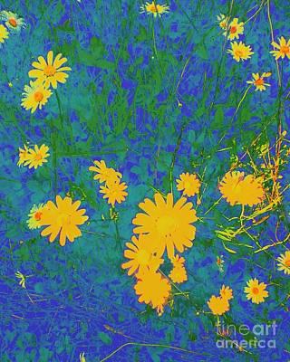Photograph - Field Flowers by Eve Penman