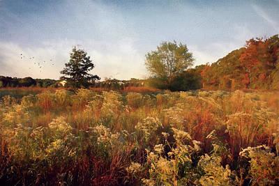 Photograph - Field by John Rivera