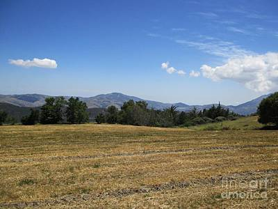 Photograph - Field Near Capilerilla by Chani Demuijlder