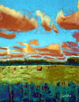 Ruben Carrillo Wall Art - Painting - Field Of Color by Ruben Carrillo