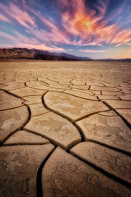 Field Of Cracks Art Print