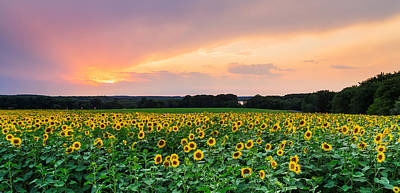 Buttonwood Farm Photograph - Field Of Dreams by Bryan Bzdula